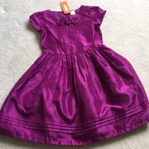 Gymboree special occasion dress w/ hair clip